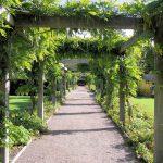 Piękny ogród – dlaczego stosujemy nawozy?